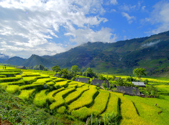 Sapa & Ethnic Markets 3days/4nights- 1 night hotel 1 night homestay